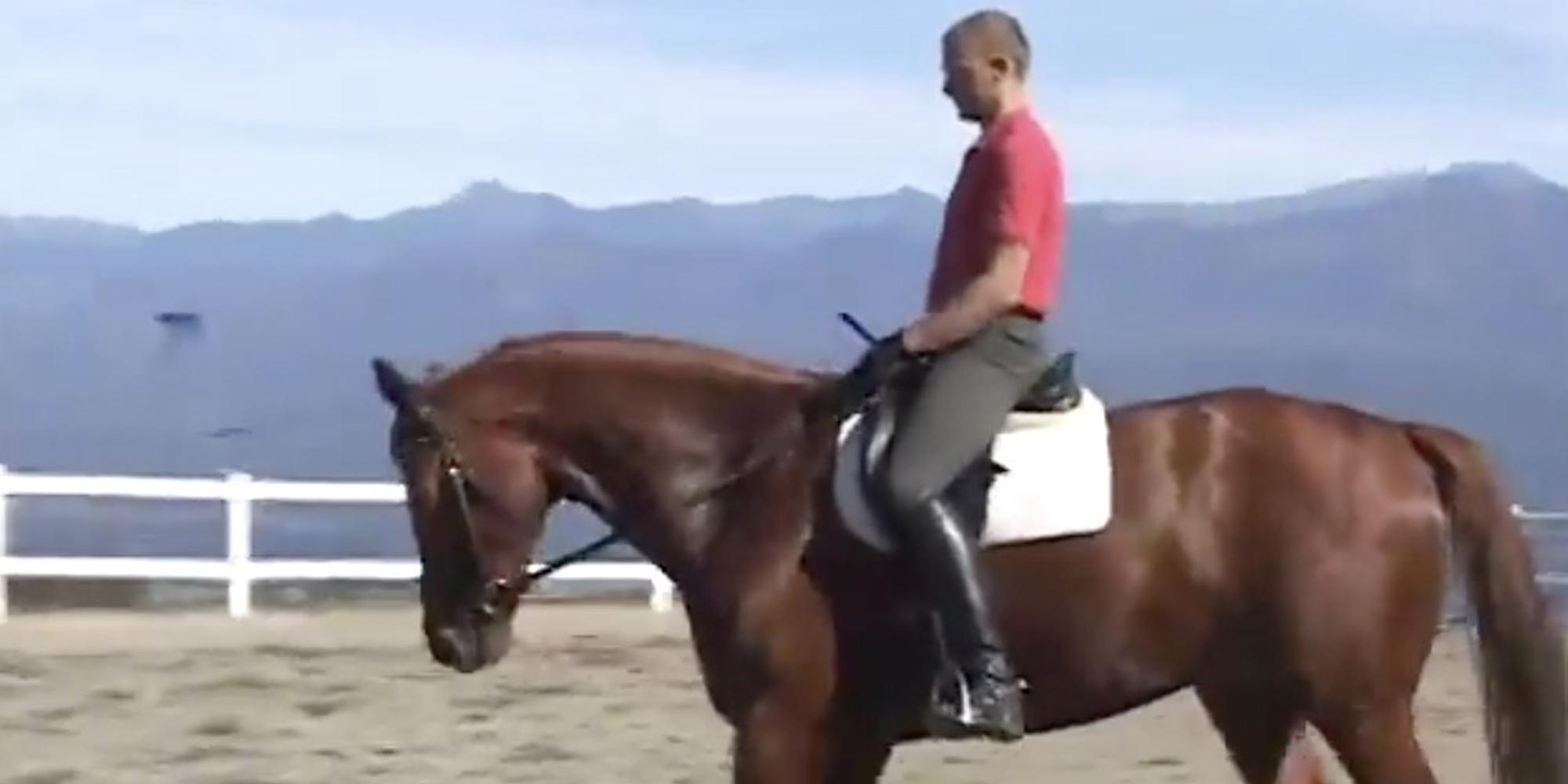 ハーモニー・ライディング Lesson 1 「馬とのコミュニケーションと騎乗姿勢」