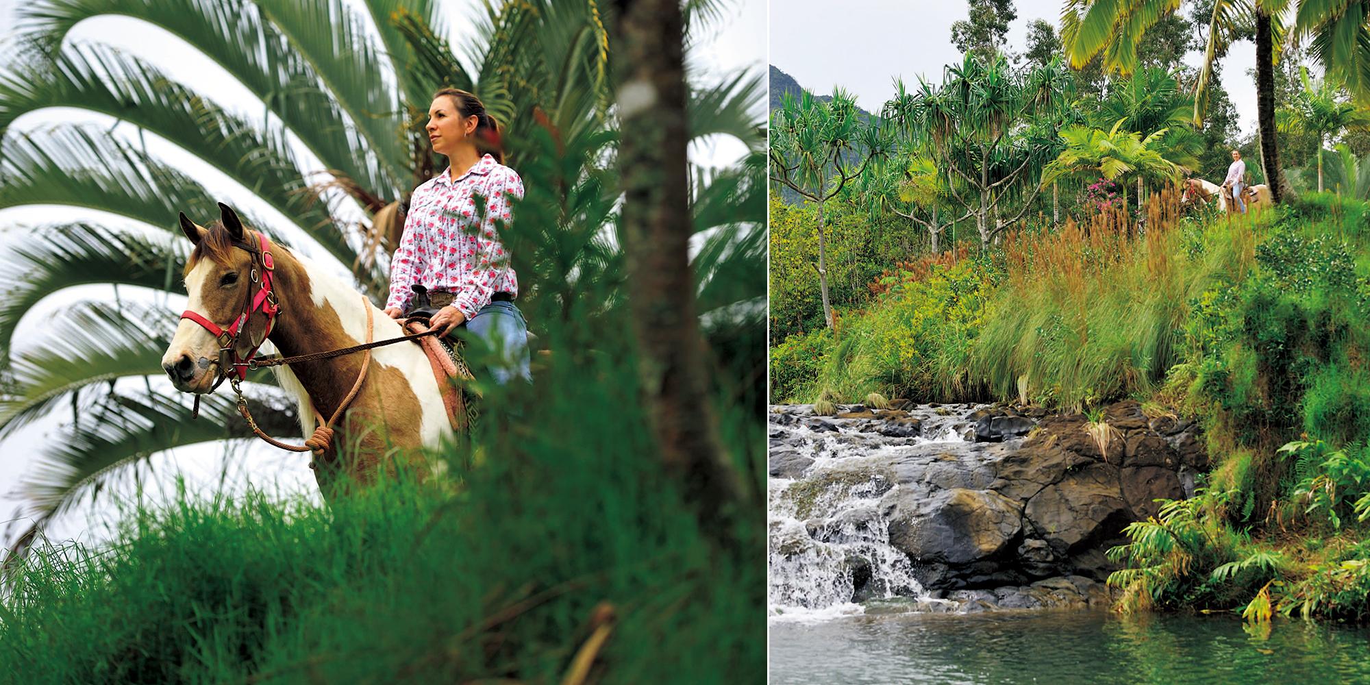 南国の植物と豊かな水に囲まれた、癒しの乗馬_カウアイ島・シルバーフォールランチ