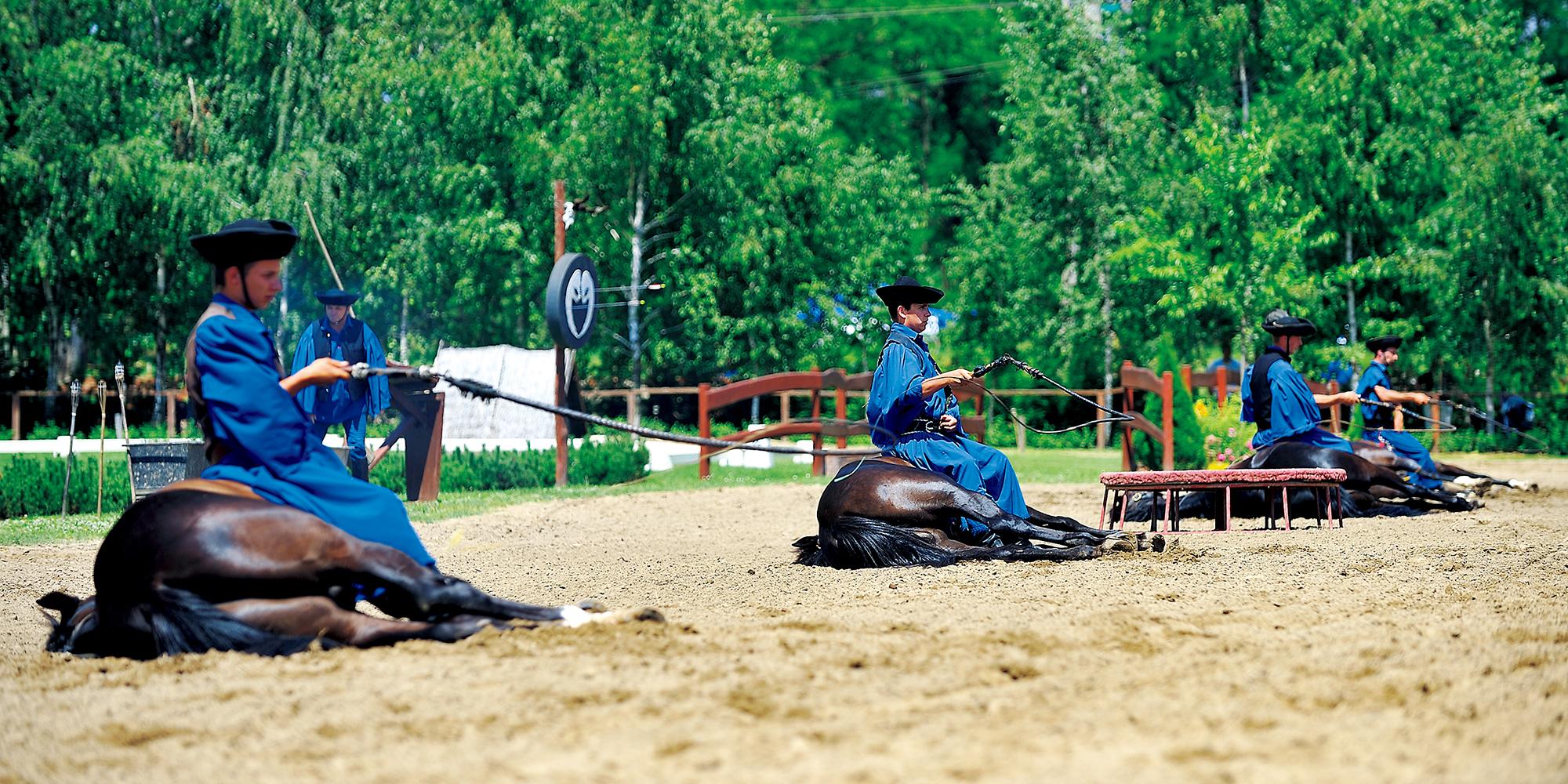 騎馬民族の魂を継ぐ、馬大国ハンガリー_ 話題の乗馬クラブ探訪